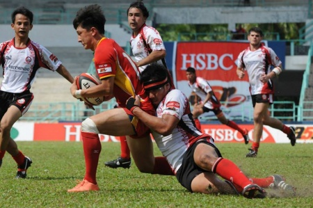 Second IRB Scalp for Rhinos
